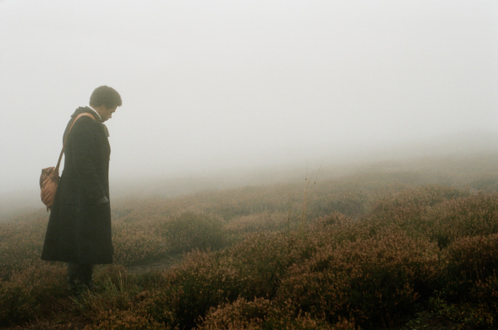 wuthering heights moors essay help